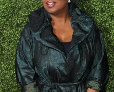 2011 TSA Winter Press Tour - OWN: Oprah Winfrey Network Launch Cocktail Reception
