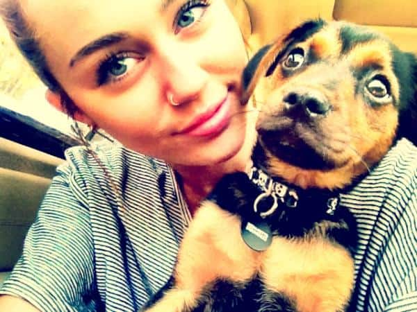 Miley Cyrus Shows Off Her New Nose Ring! - Beautelicious