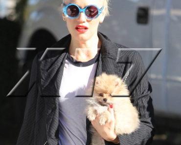 Gwen Stefani in QuayEyeware 10.18.12