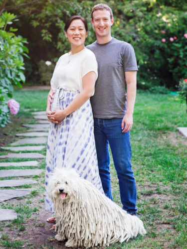 mark-zuckerberg-priscilla-pregnant