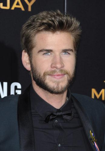 """The Hunger Games: Mockingjay - Part 2"" Los Angeles Premiere - Arrivals"
